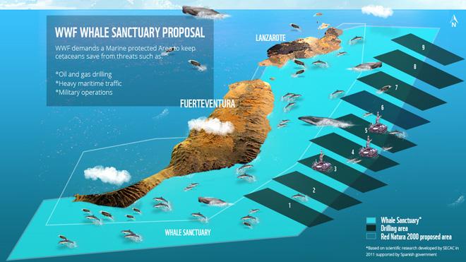 Biodiversity In Canary Islands